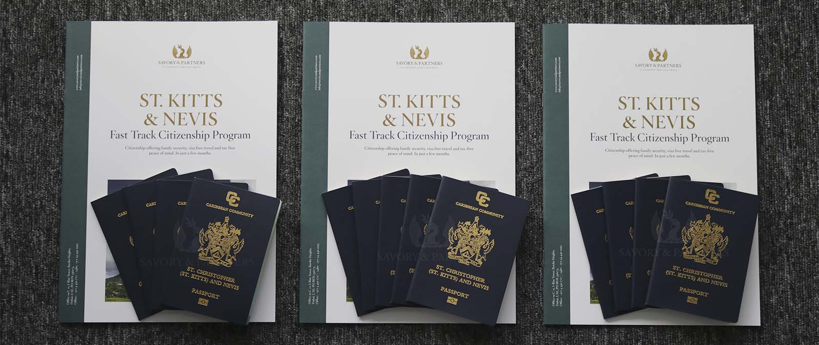 You can get the citizenship and passport of St Kitts and Nevis in exchange for a donation of USD150,000 or by real estate investment of at least USD200,000